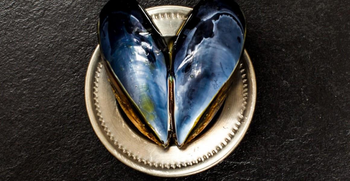 Client – Kinkawooka Shellfish