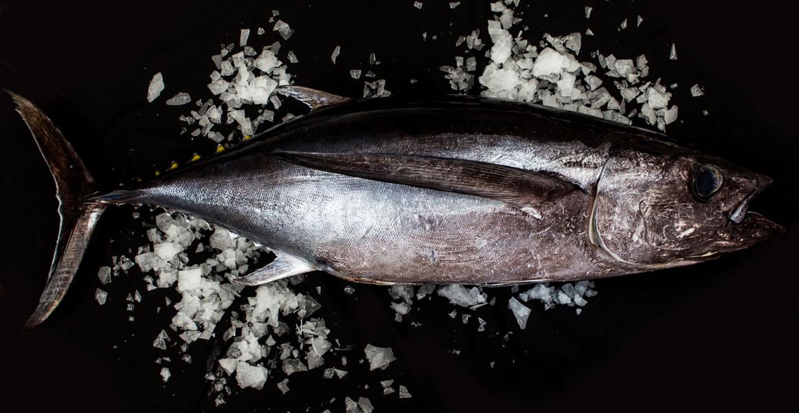 Client – Walker Seafoods Australia